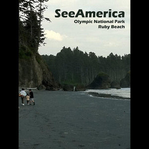 "Ruby Beach, Olympic National Park by Nathan 12"" by 16"" Print / Unframed Print See America"