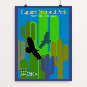 "Saguaro National Park by Bob Rubin 12"" by 16"" Print / Unframed Print See America"