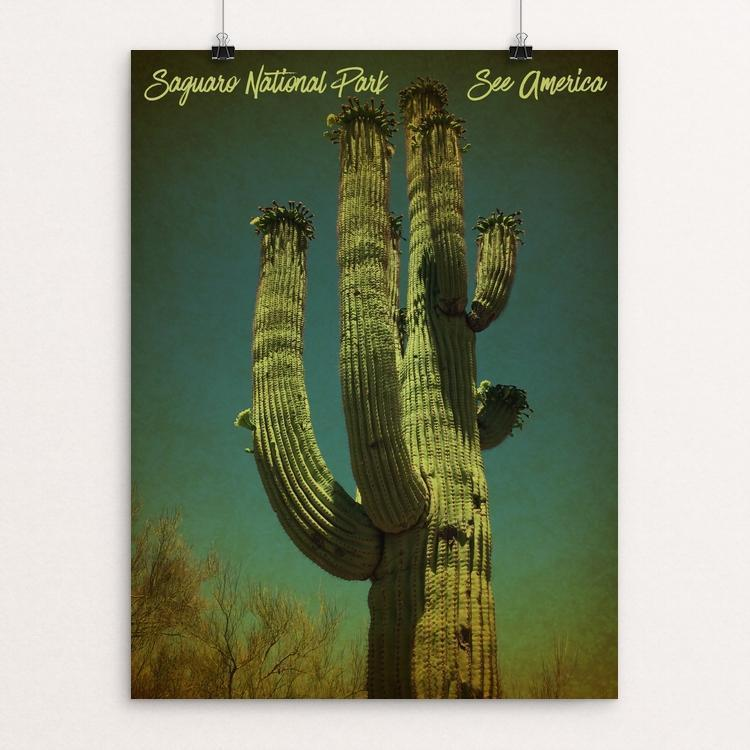 "Saguaro National Park by Bryan Bromstrup 12"" by 16"" Print / Unframed Print See America"