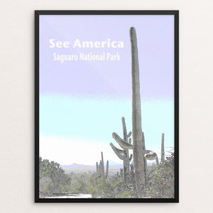 "Saguaro National Park by Jennie Lambert 12"" by 16"" Print / Framed Print See America"