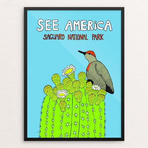 "Saguaro National Park by Lilly Rundell 12"" by 16"" Print / Framed Print See America"