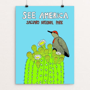 "Saguaro National Park by Lilly Rundell 12"" by 16"" Print / Unframed Print See America"