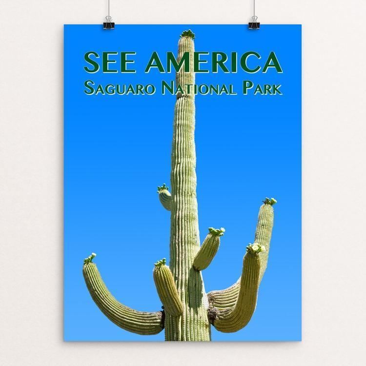 "Saguaro National Park by Zack Frank 12"" by 16"" Print / Unframed Print See America"