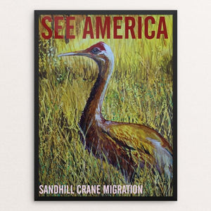 "Sandhill Crane Migration by Bruce and Scott Sink 12"" by 16"" Print / Framed Print See America"