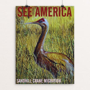 "Sandhill Crane Migration by Bruce and Scott Sink 12"" by 16"" Print / Unframed Print See America"