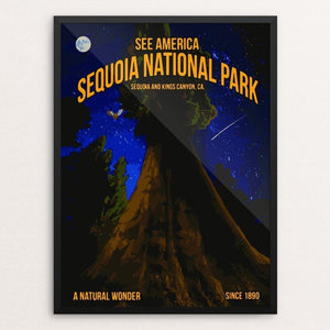 Sequoia National Park by Carlos Davila