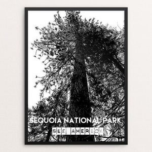 "Sequoia National Park - Tree by Bryan Bromstrup 12"" by 16"" Print / Framed Print See America"