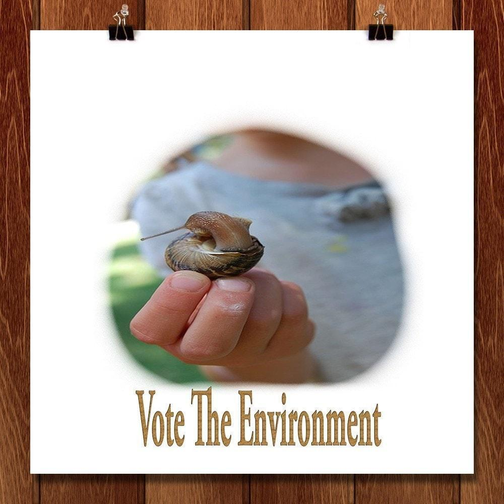 "Snail by Sierranne 12"" by 12"" Print / Unframed Print Vote the Environment"