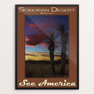 "Sonoran Desert by Sheri Emerson 12"" by 16"" Print / Framed Print See America"