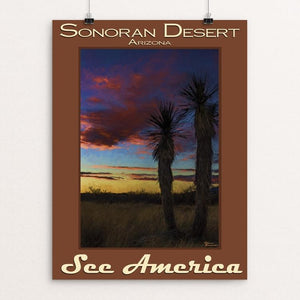 "Sonoran Desert by Sheri Emerson 12"" by 16"" Print / Unframed Print See America"