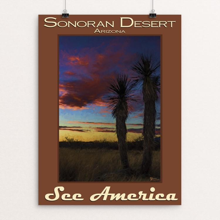 Sonoran Desert by Sheri Emerson