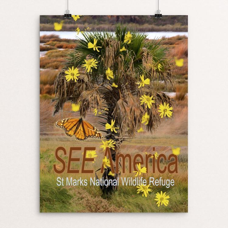 "St Marks National Wildlife Refuge by S Chang 12"" by 16"" Print / Unframed Print See America"