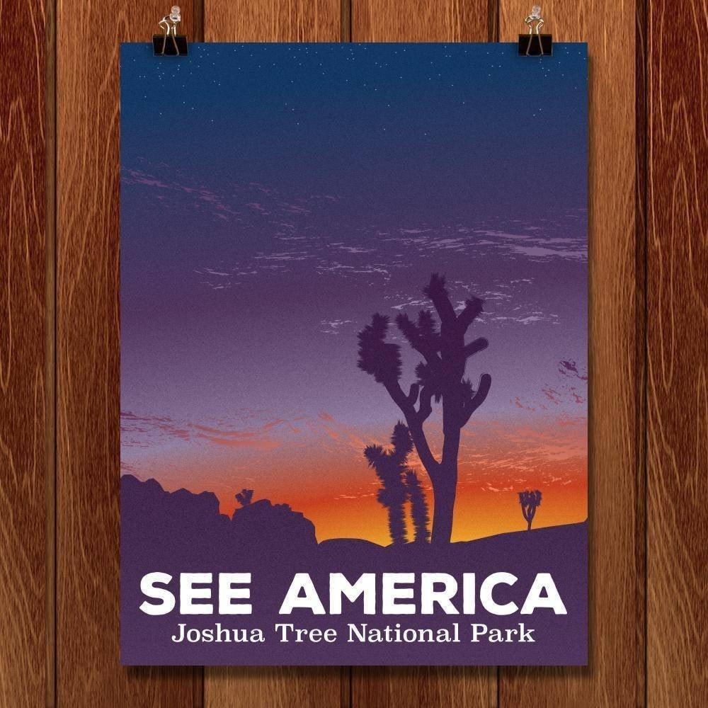 "Sunset, Joshua Tree National Park by Victor Moreno 18"" by 24"" Print / Unframed Print See America"