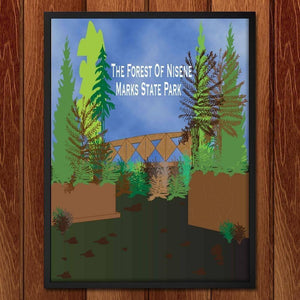 The Forest of Nisene Marks State Park  by Jennifer Gonzalez
