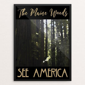 "The Maine Woods by Sheri Emerson 12"" by 16"" Print / Framed Print See America"
