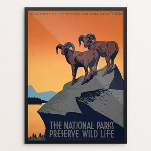 "The National Parks Preserve Wild Life by J. Hirt 12"" by 16"" Print / Framed Print WPA Federal Art Project"