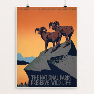 "The National Parks Preserve Wild Life by J. Hirt 12"" by 16"" Print / Unframed Print WPA Federal Art Project"