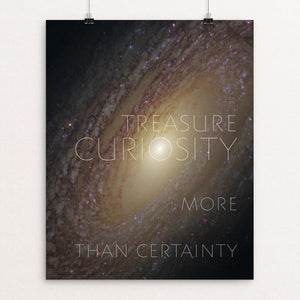 "Treasure Curiosity by Chris Lozos 16"" by 20"" Print / Unframed Print 1200 Posters"