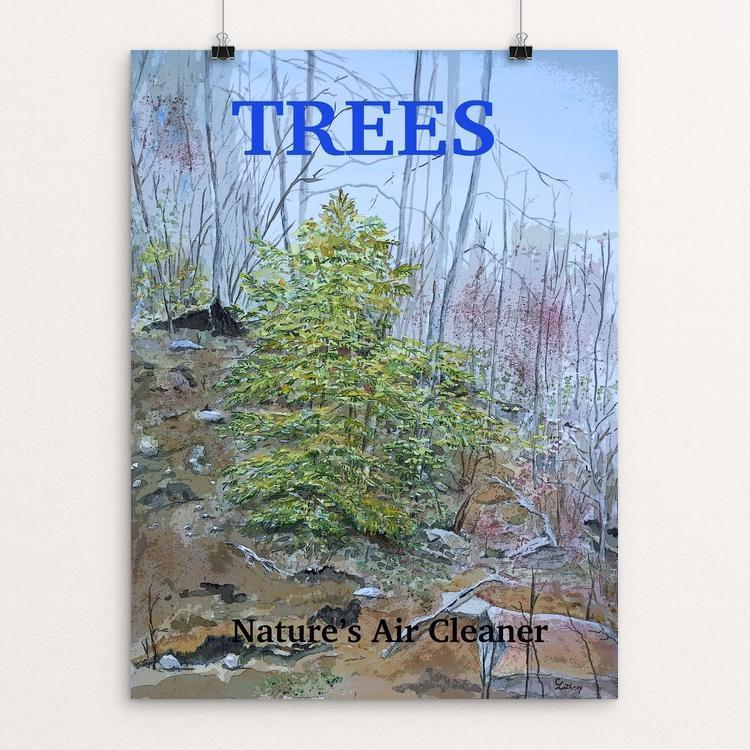 Trees Contribute to the Environment by Christine Lathrop