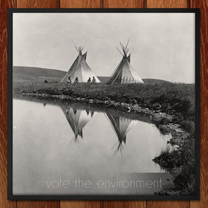 Vote the Environment by Roger Gottlieb