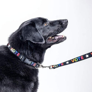 Vote With Pride Dog Leash by Susanne Lamb Pet Accessories Creative Action Network