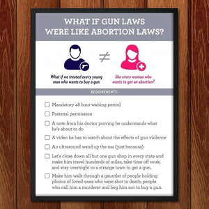 What if Gun Laws Were Like Abortion Laws? by Aaron Perry-Zucker