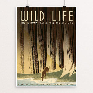 "Wild Life - The National Parks Preserve All Life. by Frank S. Nicholson 12"" by 16"" Print / Unframed Print WPA Federal Art Project"