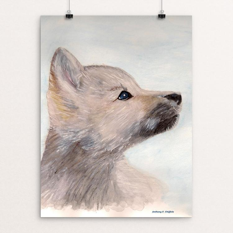 "Wolf Pup by Anthony Chiffolo 12"" by 16"" Print / Unframed Print Join the Pack"