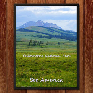 "Yellowstone National Park 2 by Anthony Chiffolo 18"" by 24"" Print / Framed Print See America"