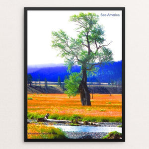"Yellowstone National Park 4 by Vito Marrone 12"" by 16"" Print / Framed Print See America"