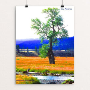 "Yellowstone National Park 4 by Vito Marrone 12"" by 16"" Print / Unframed Print See America"