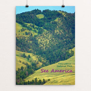 "Yellowstone National Park 5 by Anthony Chiffolo 12"" by 16"" Print / Unframed Print See America"