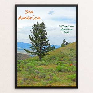 "Yellowstone National Park 7 by Anthony Chiffolo 12"" by 16"" Print / Framed Print See America"