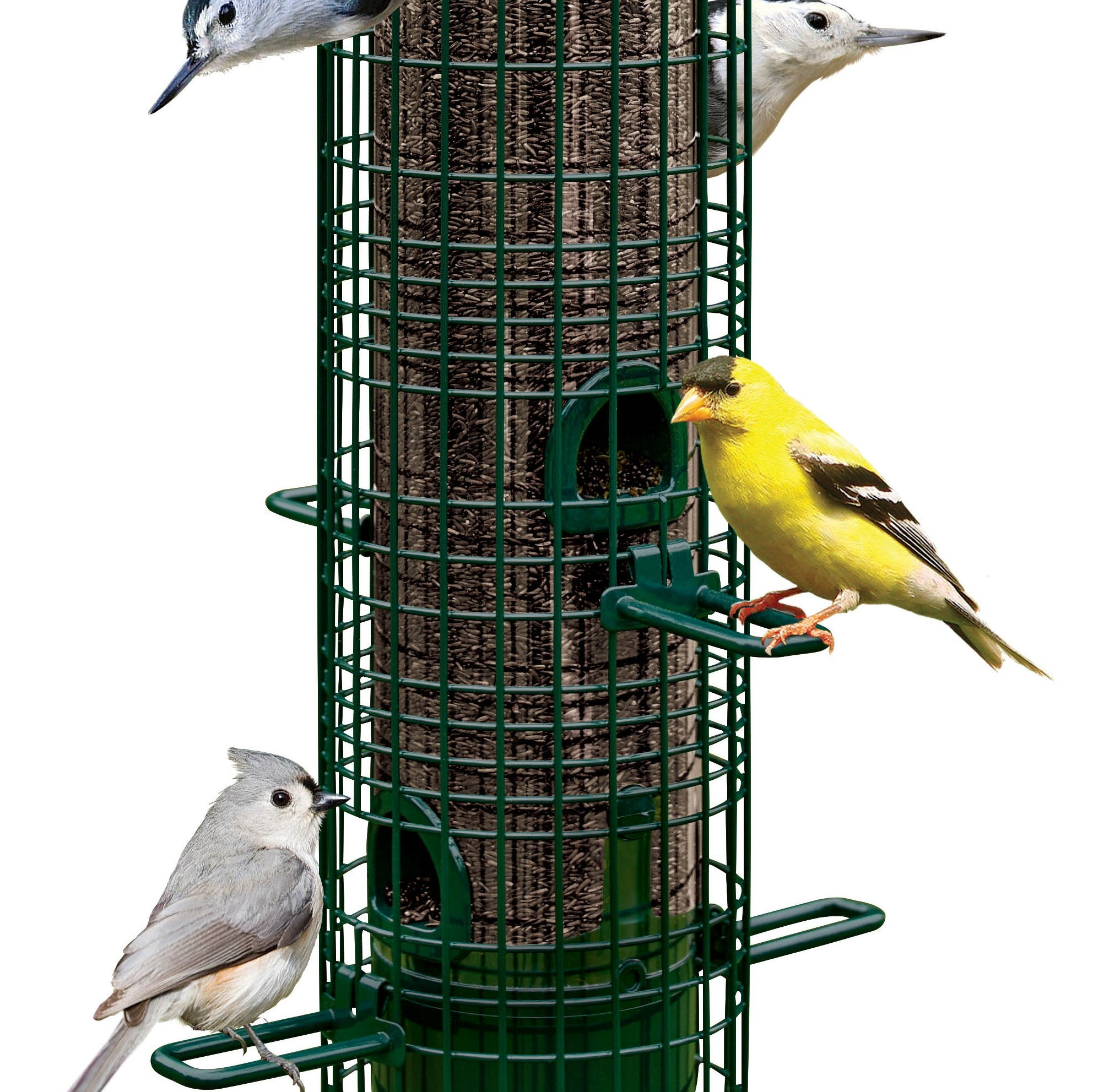 Brome Bird Care Squirrel Buster™ Classic 1.4 Qt Bird Feeder