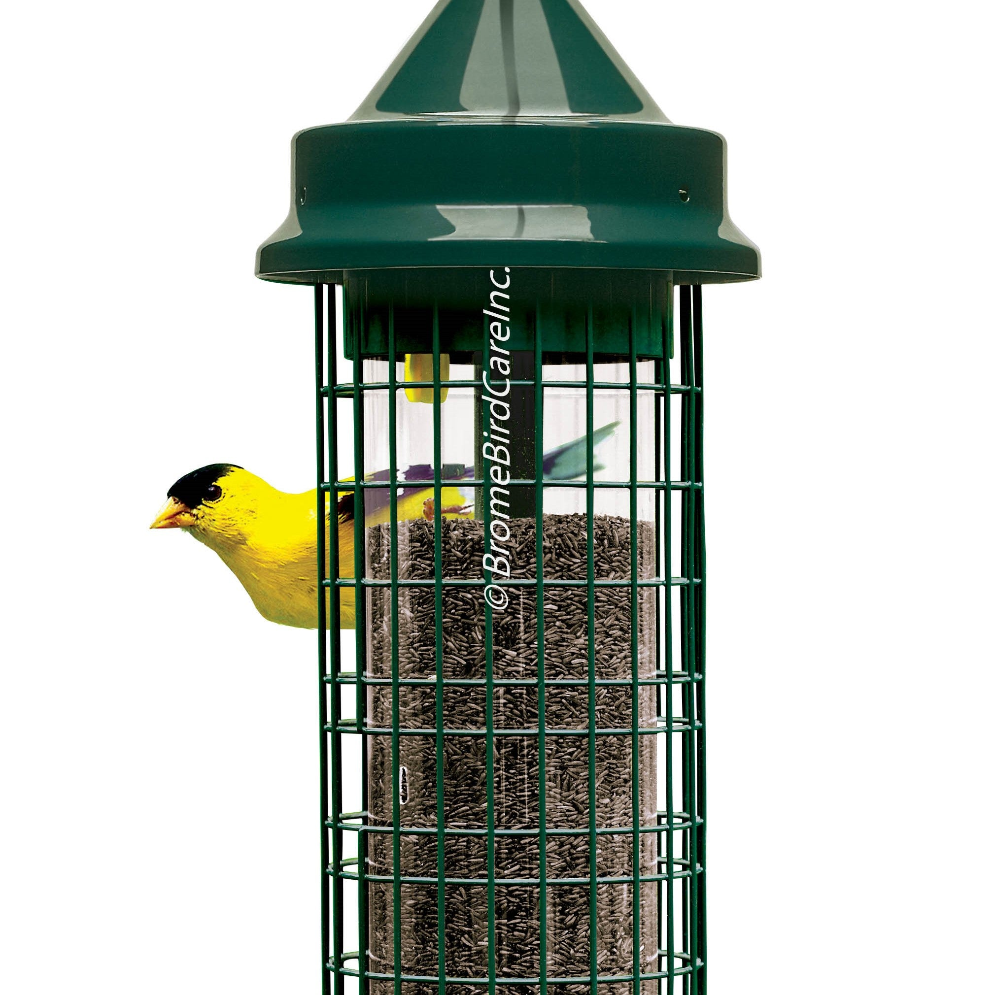 Brome Bird Care Squirrel Buster™ Finch 1.4 Qt Bird Feeder