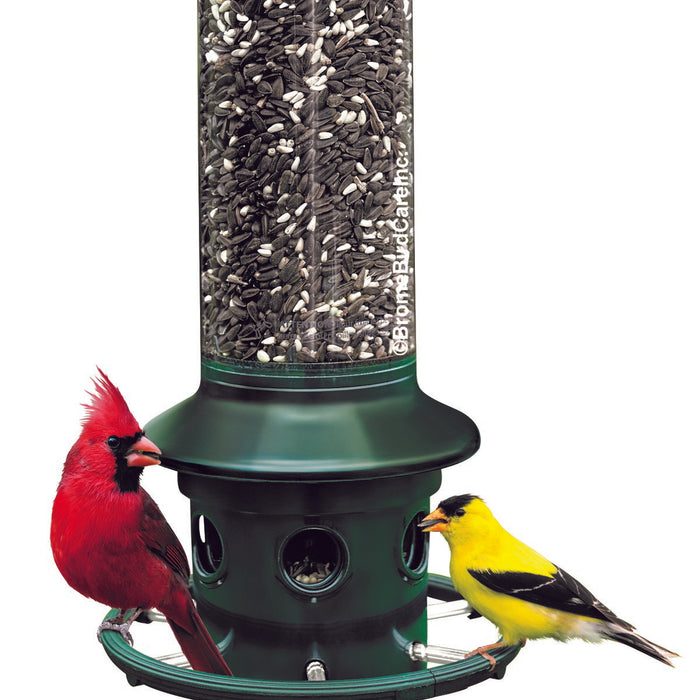 Brome Bird Care Squirrel Buster™ Plus 3 Qt Adjustable Weight Mechanism Bird Feeder