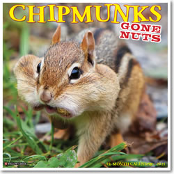 Chipmunks (Gone Nuts!) 2021 Wall Calendar