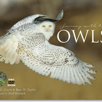 Journey with the Owls - Hardcover Book & Owl Calls DVD