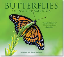 Butterflies of North America - Hardcover Book