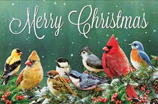 Pumpernickel Press Merry Christmas Birds Christmas Card 16/Box