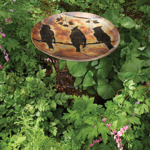 Ancient Graffiti Cedar Waxwing Flamed Birdbath