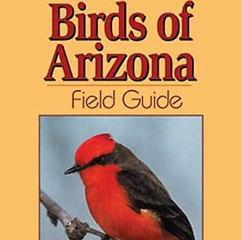 Arizona Birds Field Guide