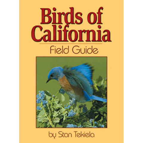 California Birds Field Guide