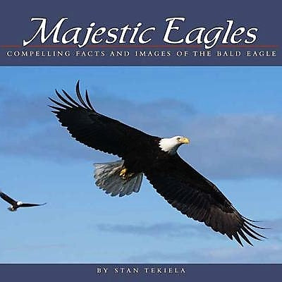 Majestic Eagles Book