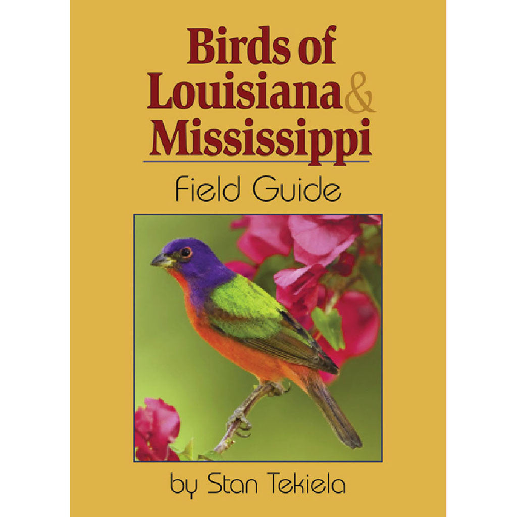 Birds Of Louisiana Field Guide