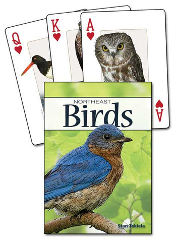 Birds of the Northeast Playing Cards