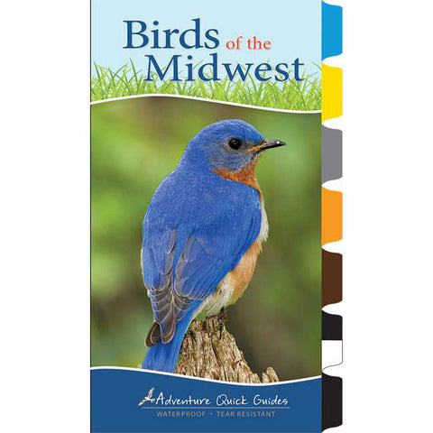 Birds Of The Midwest Quick Guide
