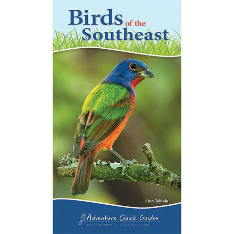 Birds Of The Southeast Quick Guide