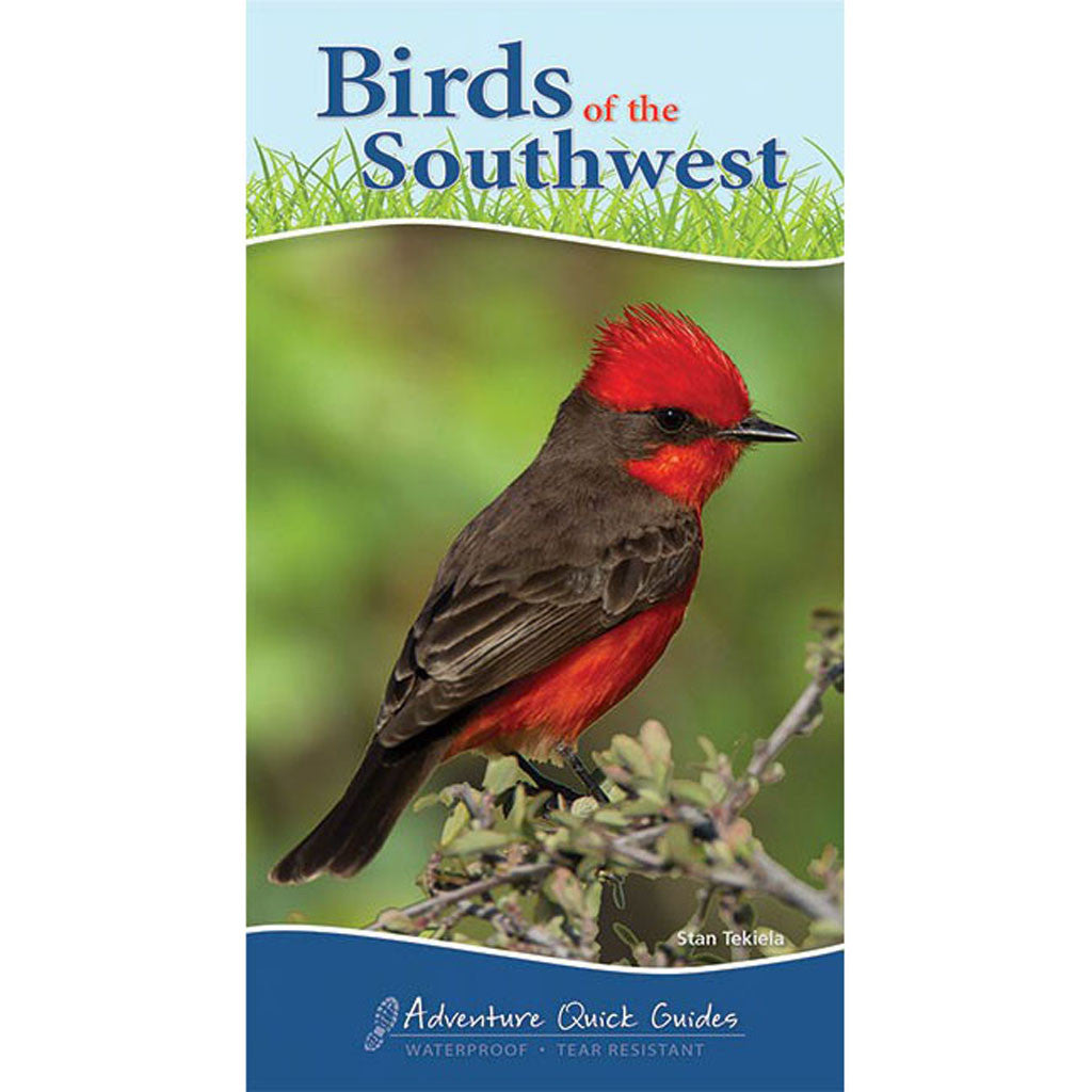 Birds Of The Southwest Quick Guide
