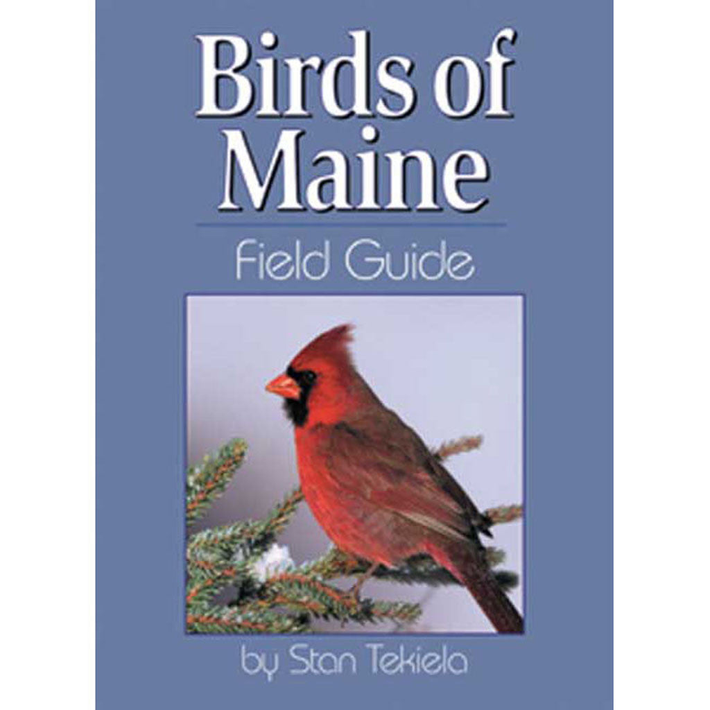 Maine Birds Field Guide